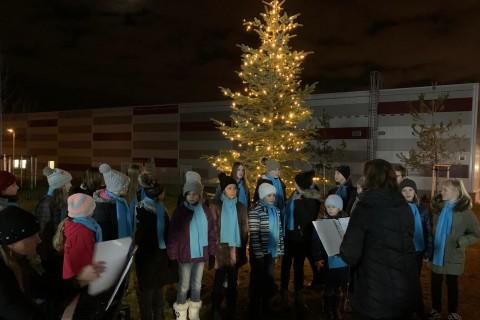 Rozsvěcení vánočního stromku, aneb advent u Finepu