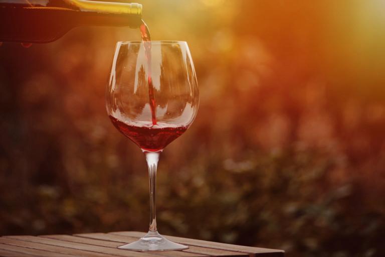 Oslava svatomartinských vín
