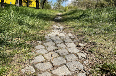 Cesta ke kapličce