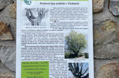 Památný strom, Chaby