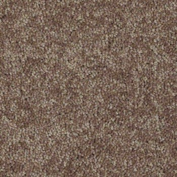 Carpets - winter weat
